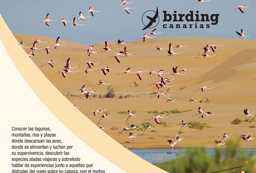 El oeste de África a vista de pájaro